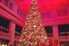 Macy's Walnut Room Tree