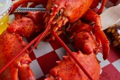 Lobstah11