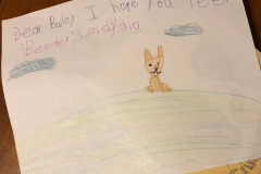 These melt my heart!! Our welcome notes from Lydia Grace when we arrived for Christmas, including a special one for Bailey. And her waiting on us as we pulled in the driveway.